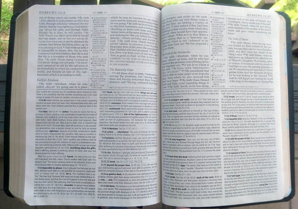 I love study Bibles, but I can understand that this much information, packed so densely, can sometimes seem intimidating.