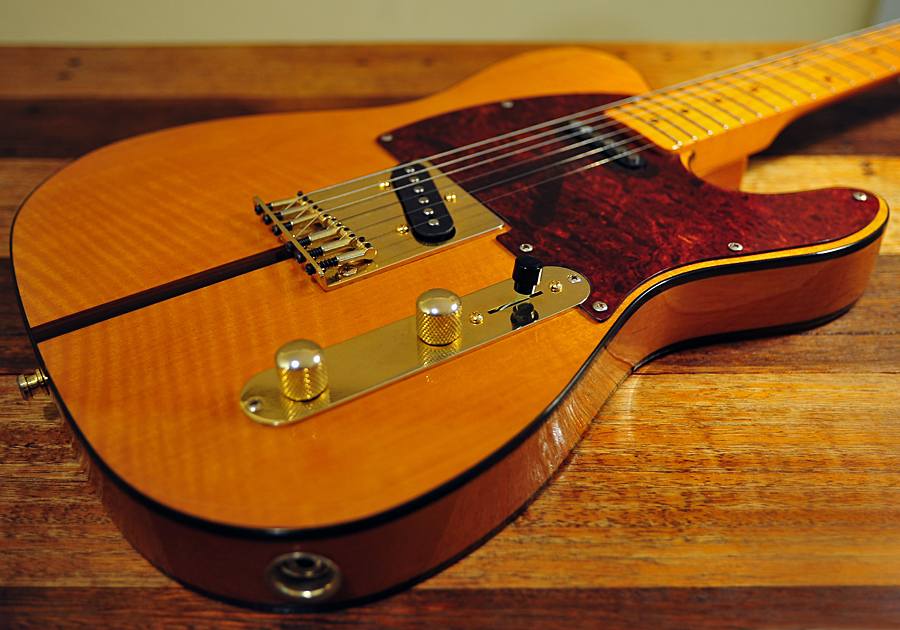 The most recent guitar I bought, a couple of years ago, is a 'Madcat' Telecaster similar to what Prince played. Success and fame as a musician were my main goals when I started to learn guitar.